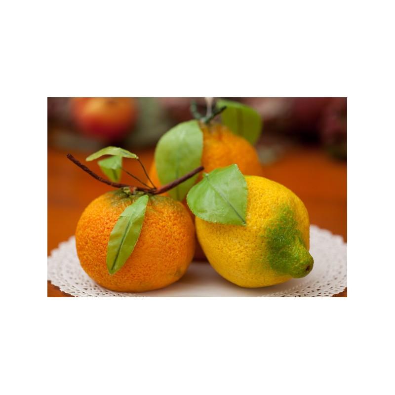Foglie limone pronte per frutta martorana in confezione da - Foglie limone nere ...