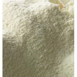 Geilat Latte Magro in Polvere 1 kg