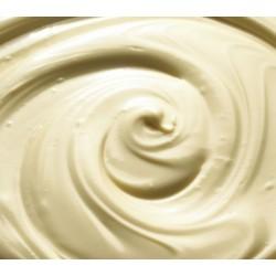 Variegato per gelato Giotto
