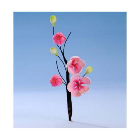 Ramo fiori di Pesco Pastigliaggio