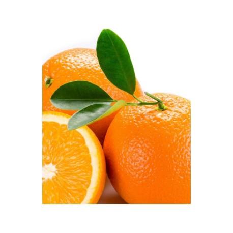 Foglie di Arancia per marzapane