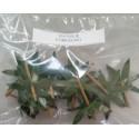 Foglie di Pomodoro pronte per frutta martorana