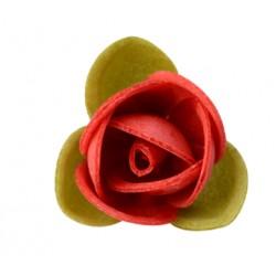 230 Roselline Gialle / Rosse in Ostia