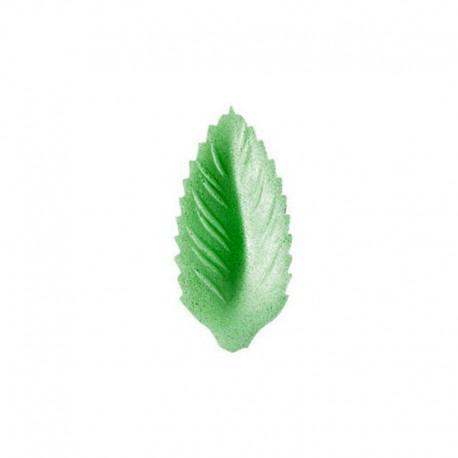 Foglia in Ostia Verde per decorazioni