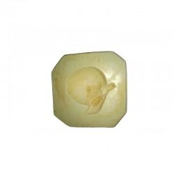 Stampo frutta martorana Albicocca