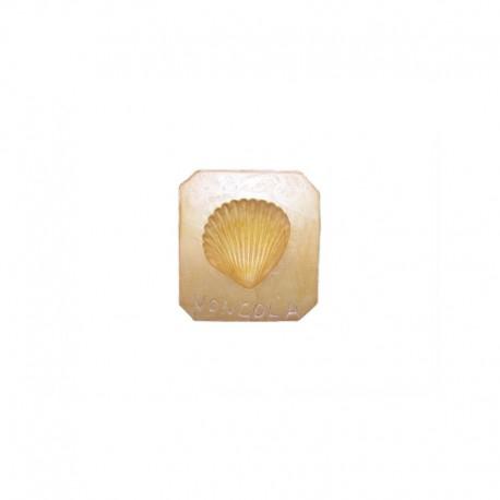 Forma in gesso Vongola per pasta di martorana