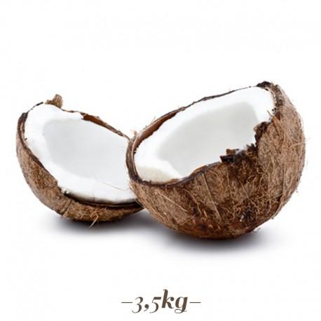 Pasta per Gelato alla frutta Cocco