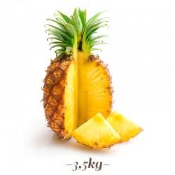 Pasta per Gelato alla frutta Ananas