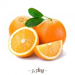 Pasta per Gelato alla frutta Arancia