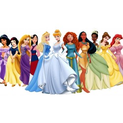 Cialde per torte Principesse Disney Rettangolari