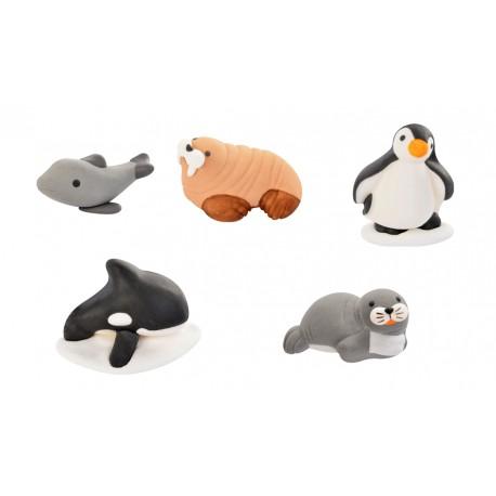 Animali marini in zucchero 3d